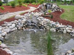 Dekoratyvinių baseinų aplinka