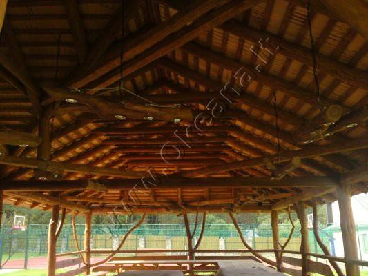 Pavesinės stogas