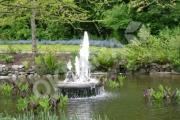 Natūralus tvenkinys su fontanu