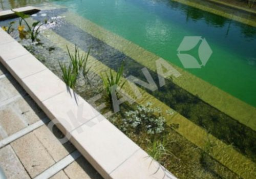 Tvenkinio aplinka. Projektas #25